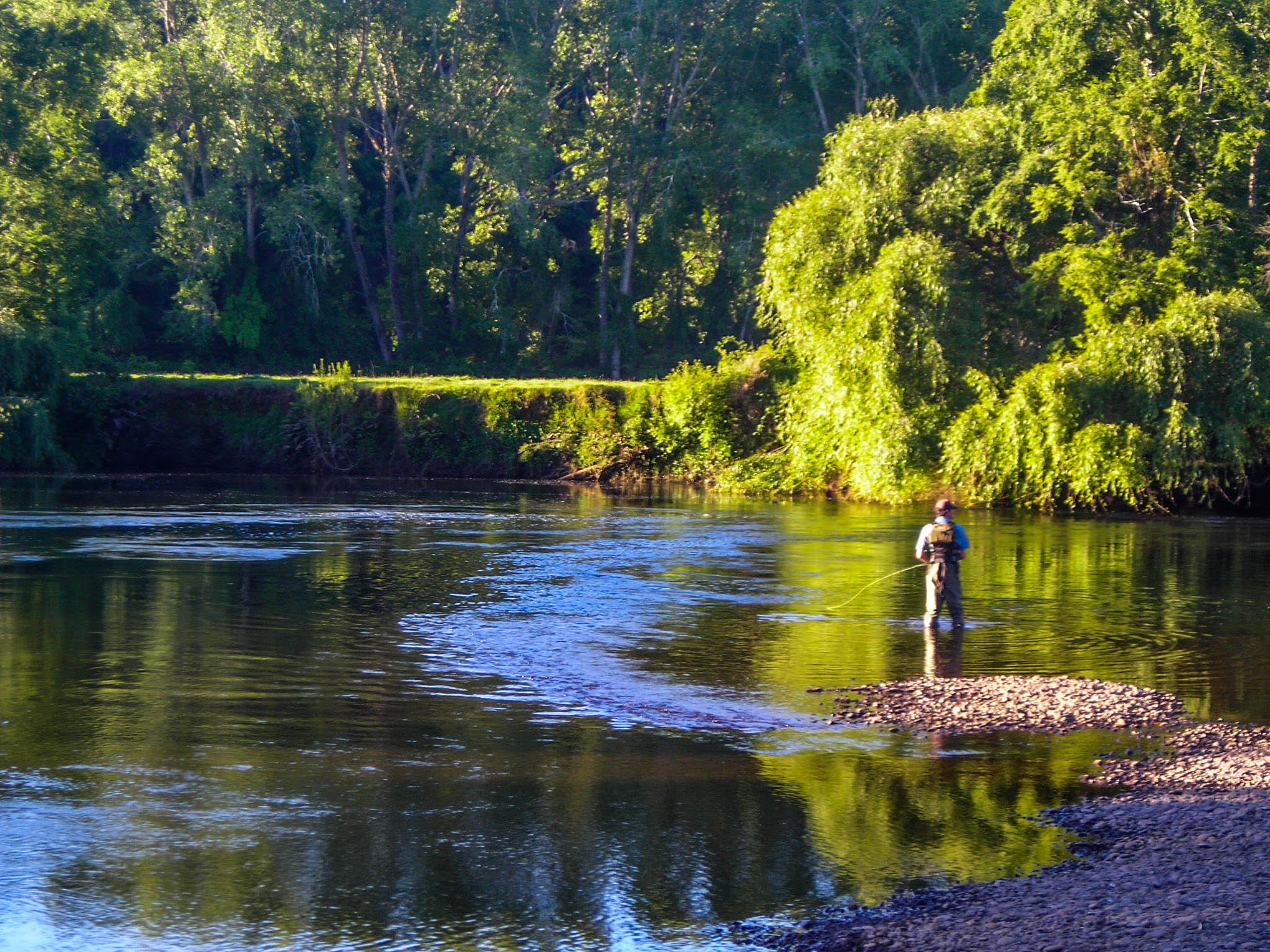 Rio Cruces Angler-0229